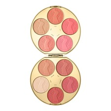 Limited Edition Color Wheel Amazonian Clay Blush Palette